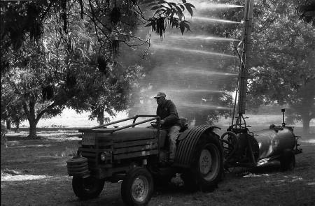 Gideon Shembeck podczas pracy na swojej farmie