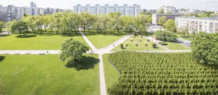 Zwycięski projekt pomnika dla polskich Sprawiedliwych wśród Narodów Świata