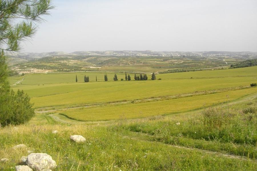 Dolina Ela w Izraelu. Fot. Wikipedia
