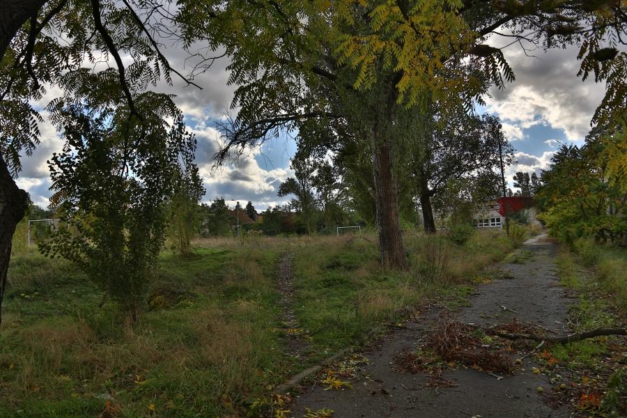 Fragment terenu starego cmentarza żydowskiego w Kaliszu /fot. CHIDUSZ 2017