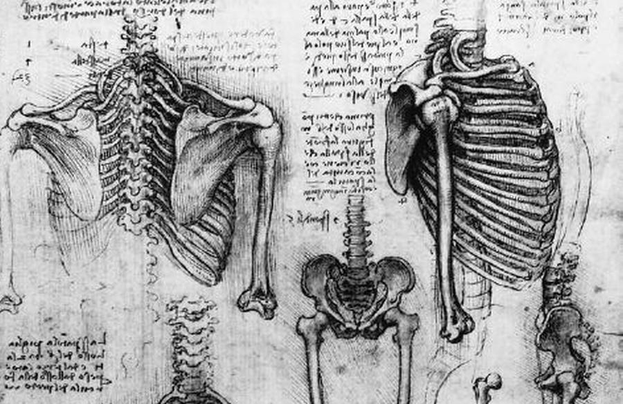 Szkic Leonarda da Vinci /fot. Wikipedia