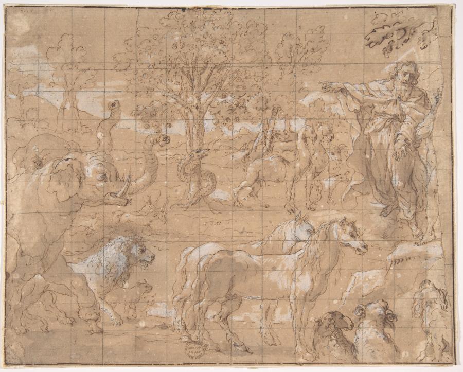"""""""Stworzenie zwierząt"""". Szkic nieznanego twórcy, Niderlandy, XVI wiek /fot. The Metropolitan Museum of Art"""