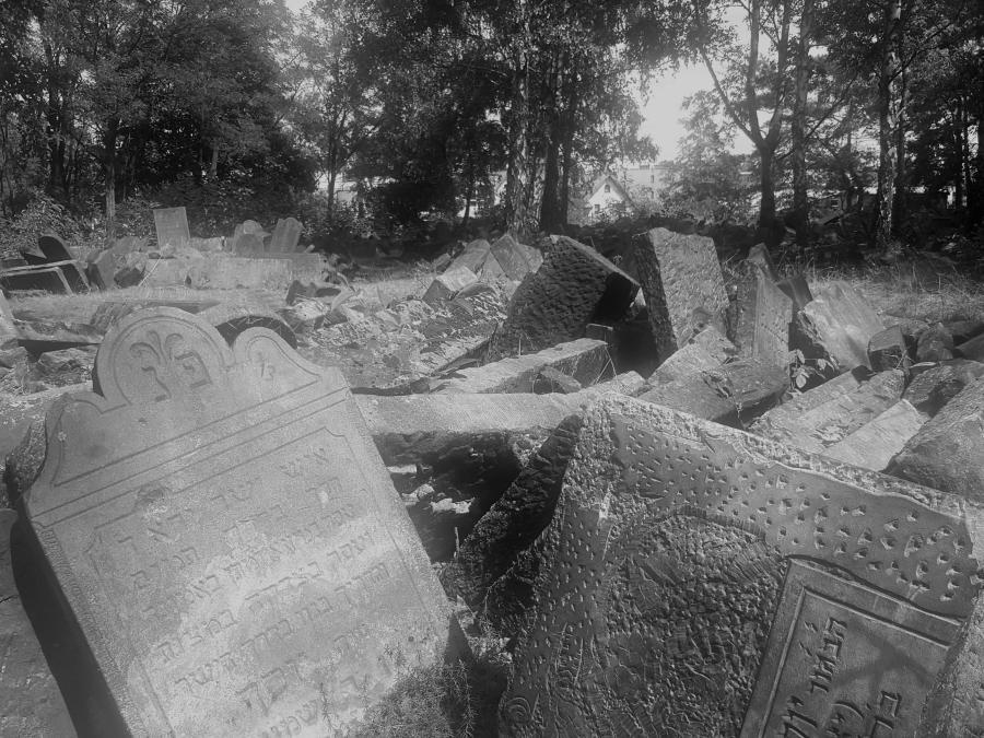 Ocalałe macewy na cmentarzu żydowskim na Bródnie (2018) /fot. CHIDUSZ