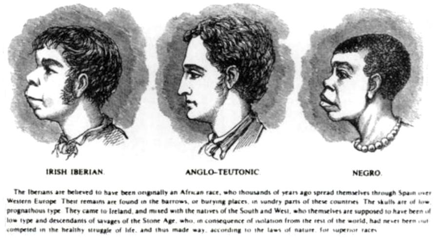 rysunek z książki H. Stricklanda Constable jako przykład rasizmu, 1899/ Wikipedia